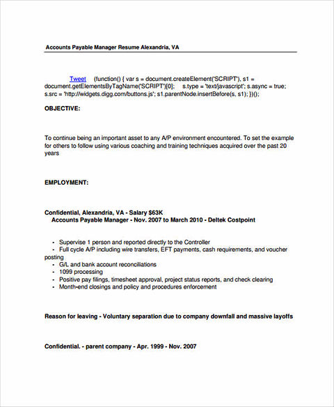 Excellent Account Manager Resume Sample