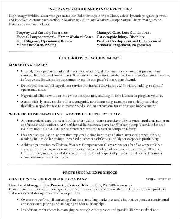 Insurance Sales Executive Resume4