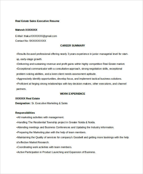 Real Estate Sales Executive Resume