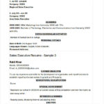 Regional Sales Executive Resume Example