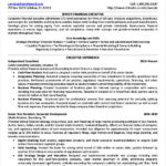 Senior Financial Executive Resume Example