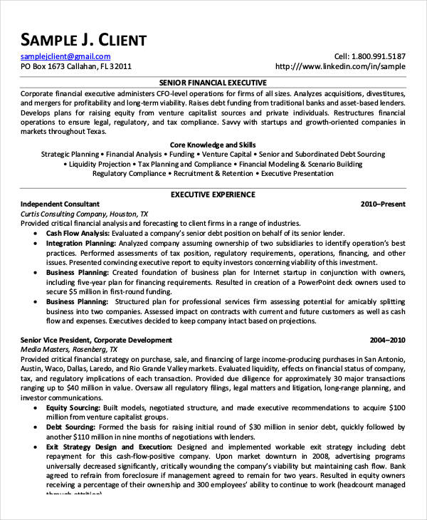 senior financial executive resume example - Senior Executive Resume Examples