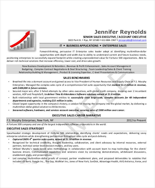 sales executive resume 9 kb 8 corporate sales executive resume 83 kb 6