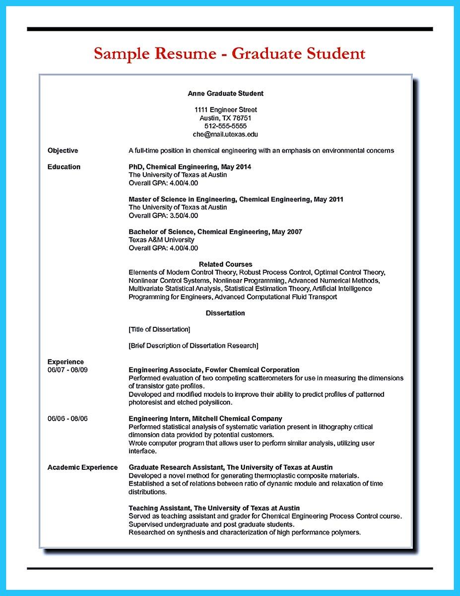 access database developer resume