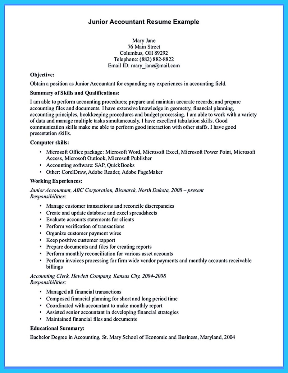 Snefci.org  Accounting Job Resume