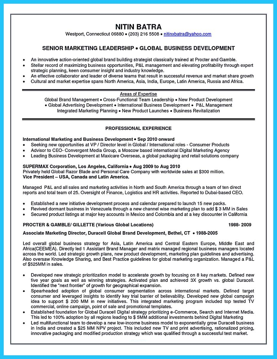 areas of expertise resume examples