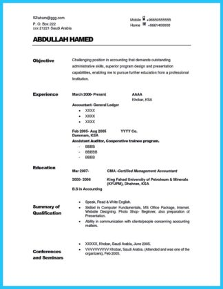 audit experience resume and income auditor resume