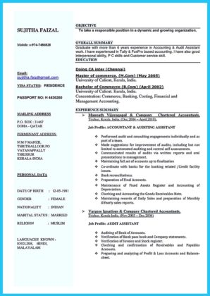 audit senior resume and audit profile resume