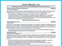 auditor resume (46)