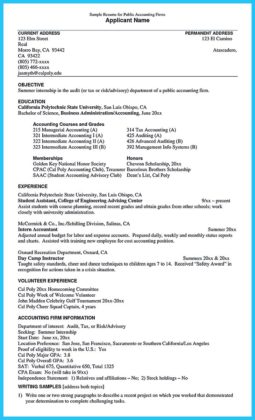 auditor resume and audit experience resume sample