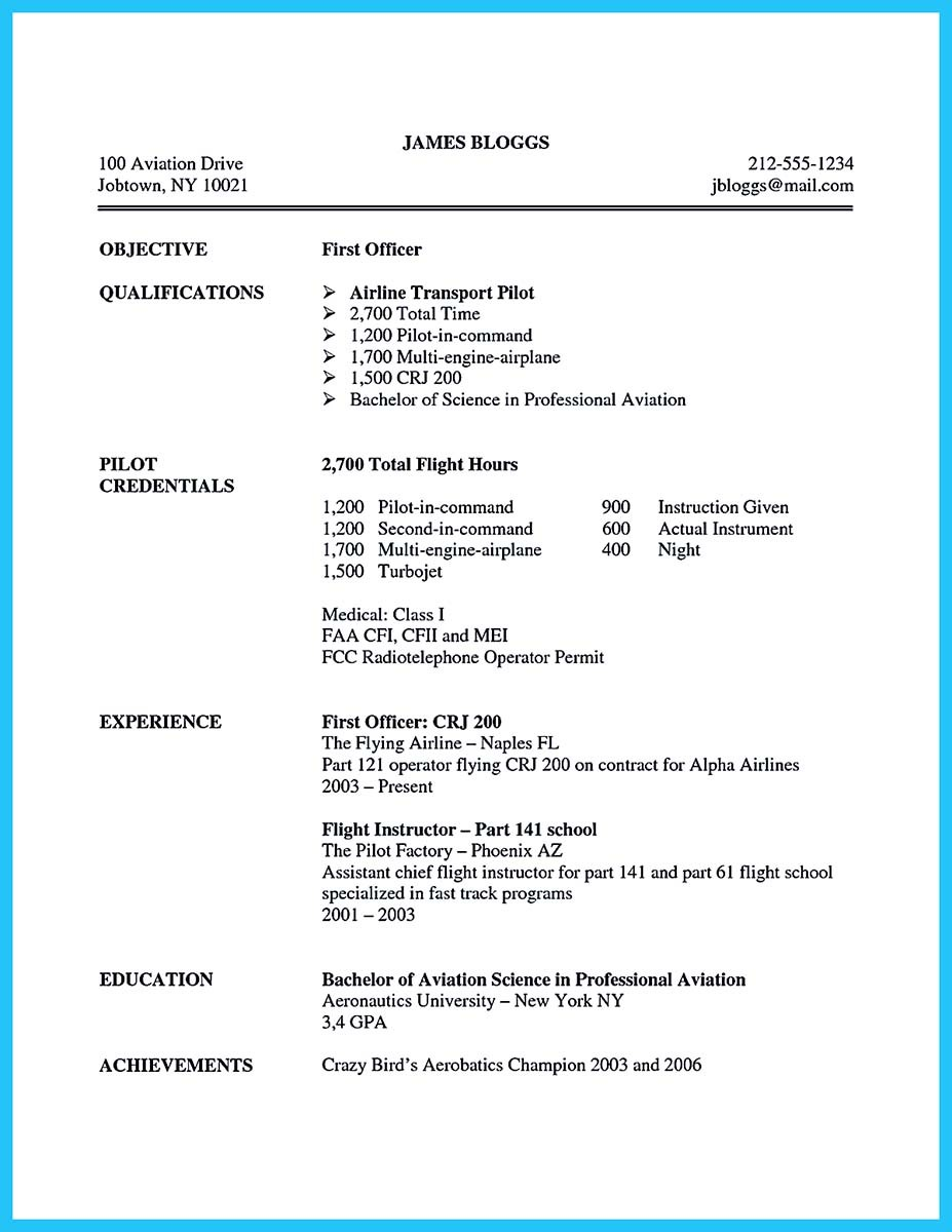 aviation resume summary