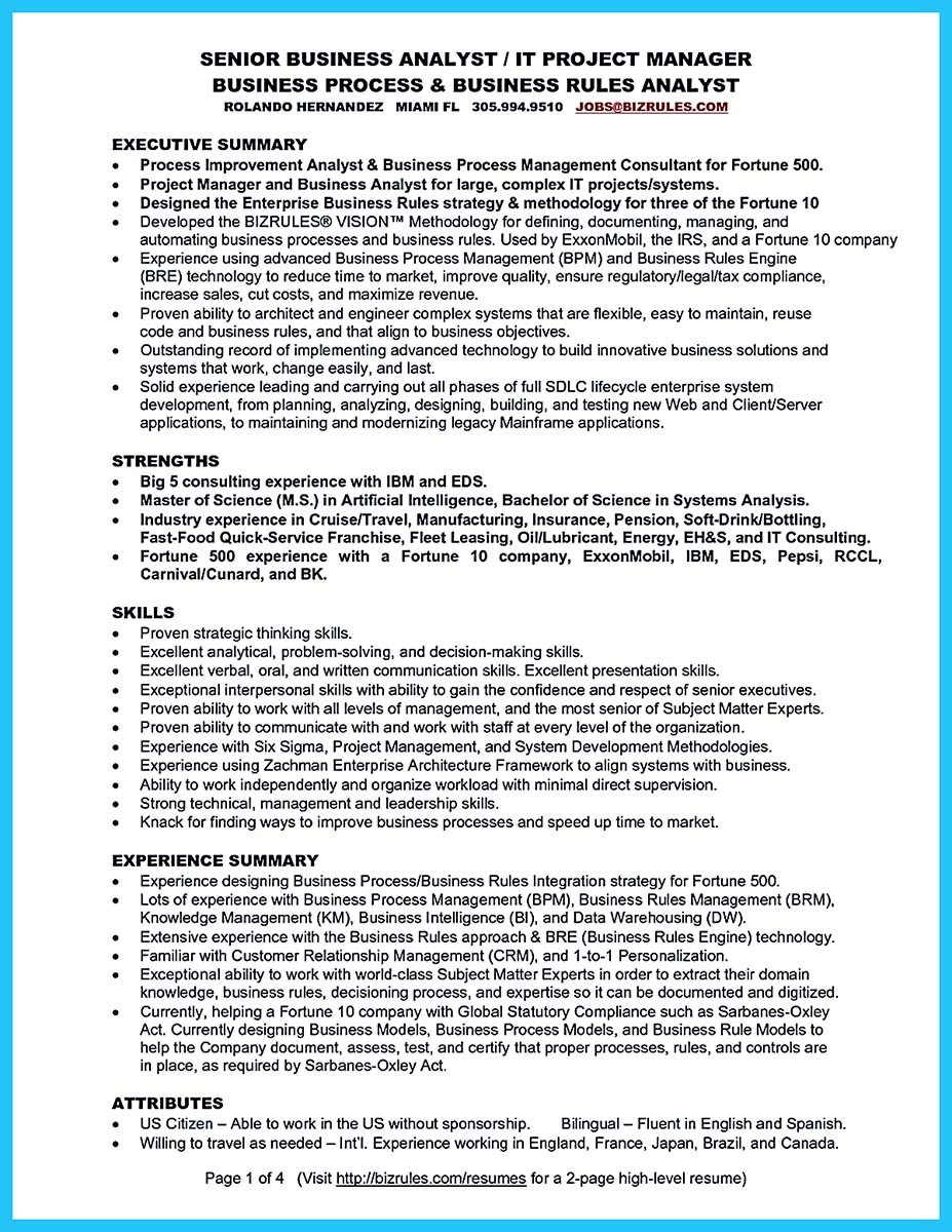 ... Examples Business Analyst Resume Summary ...  Business Analyst Resume Summary Examples