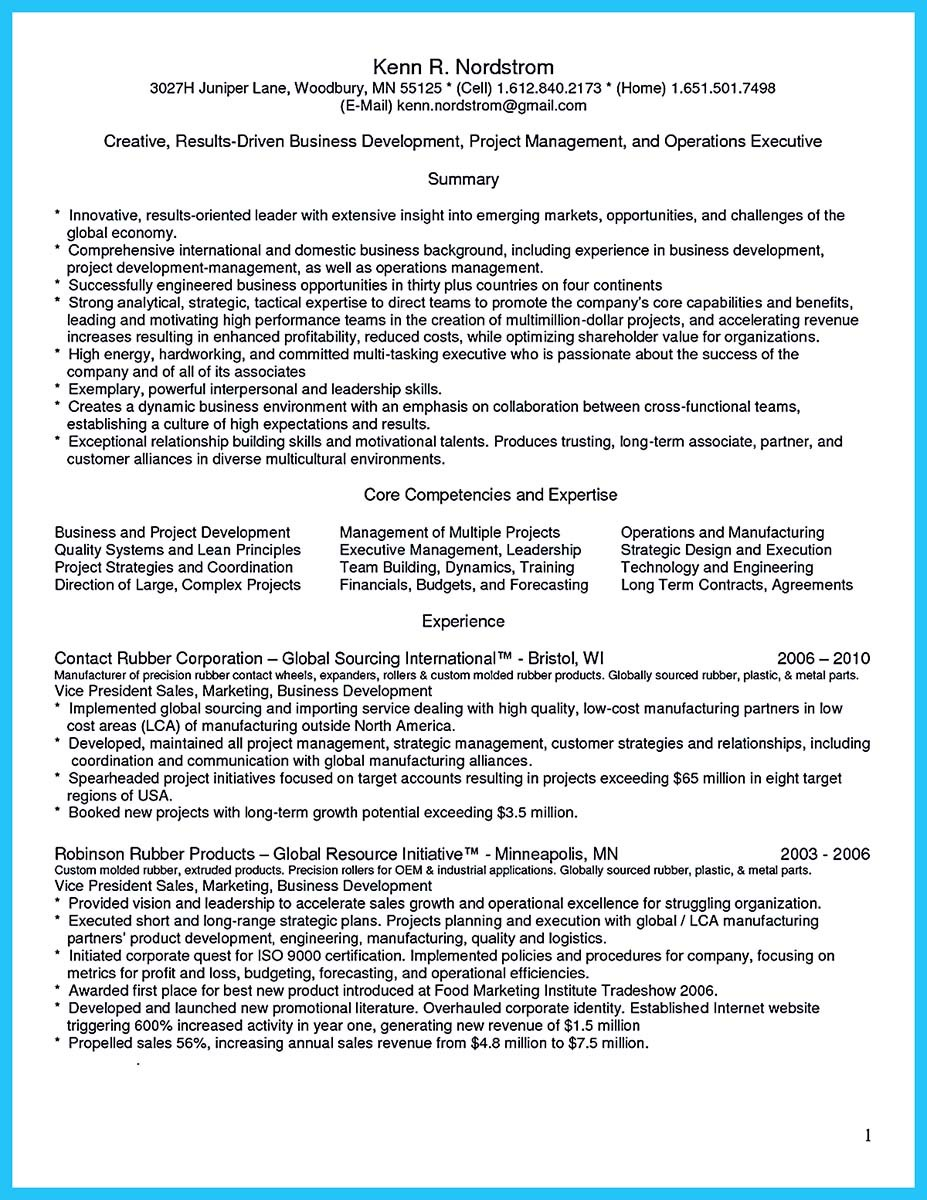 business development manager cv resume
