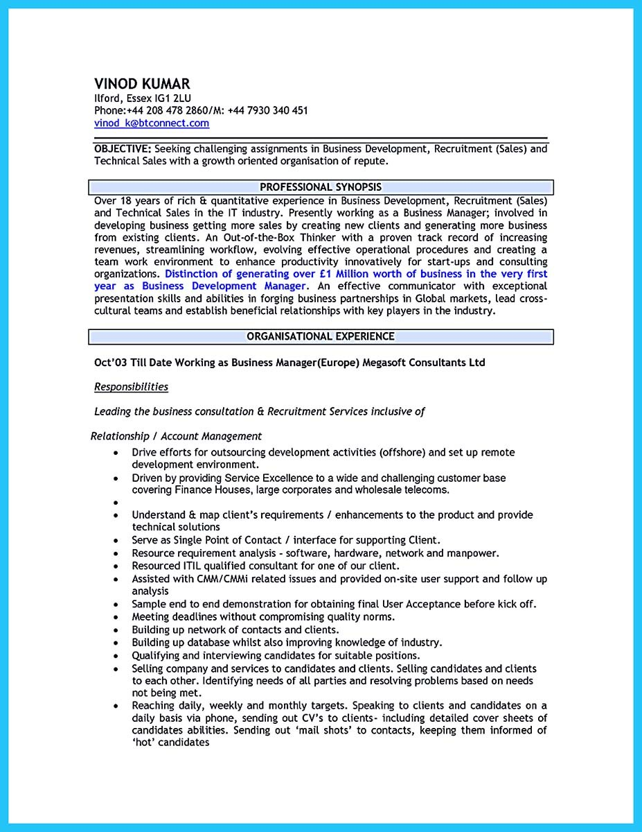 business development manager resume sample pdf