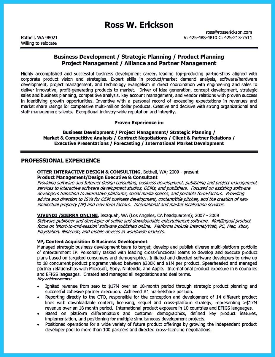 business development resume executive summary