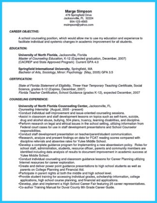 business owner resume pdf