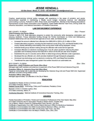 cashier resume examples and cashier resume format