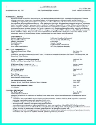 chief compliance officer resume examples