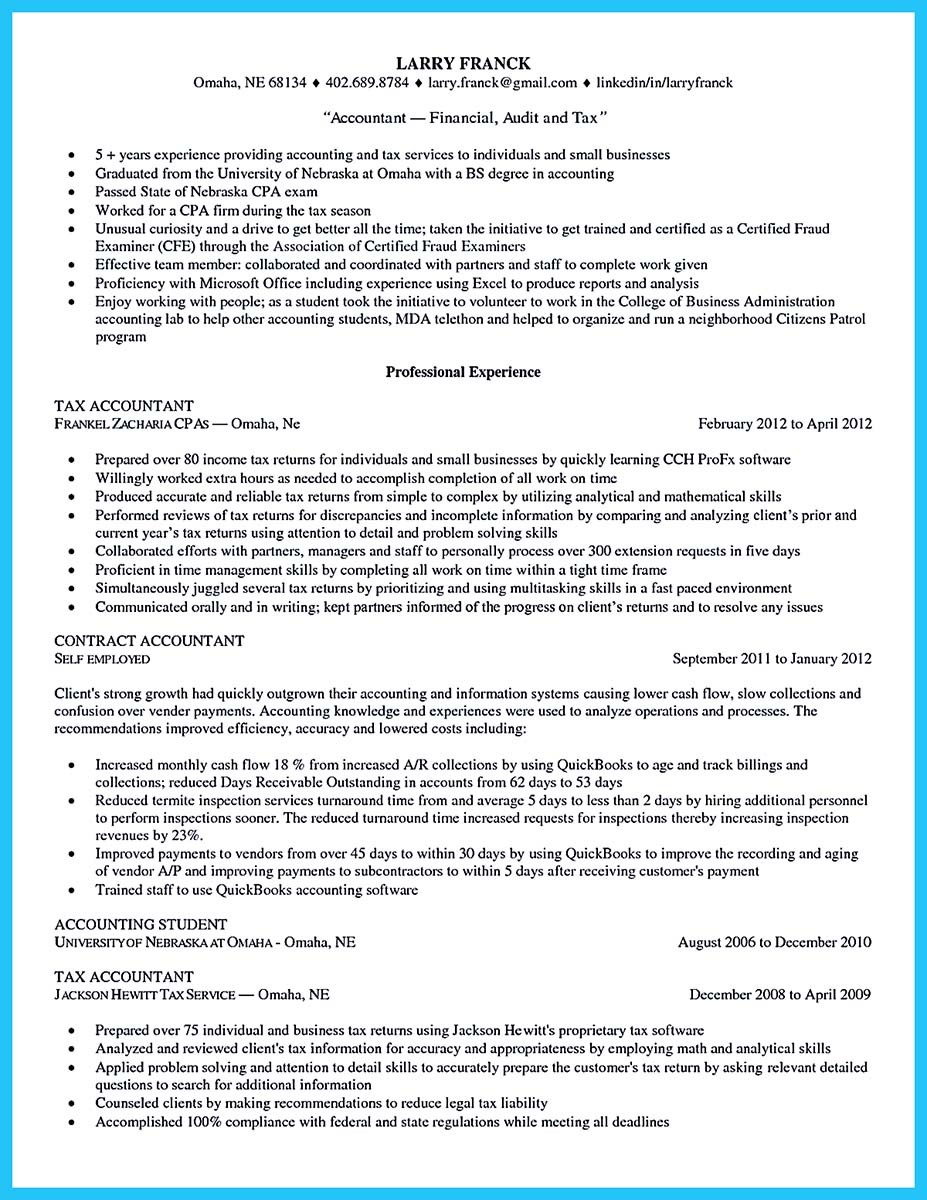 Audit Big Resume