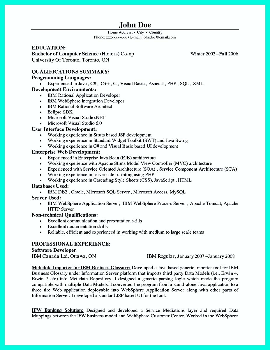 computer programmer resume template word - Programmer Resume Sample