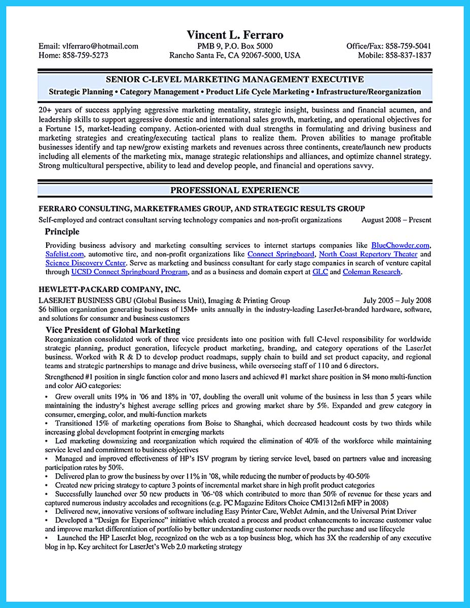 sample cio resumes resume cv cover letter - Cto Cover Letter