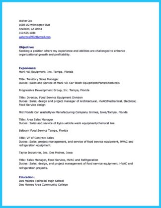 auto sales manager resume examples
