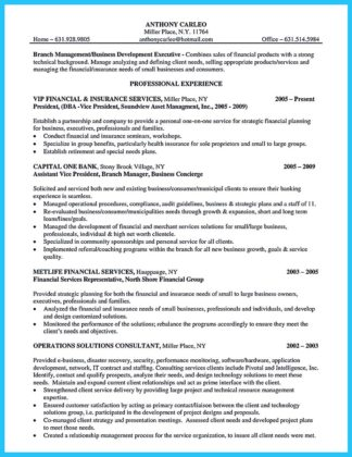 example of bank manager resume
