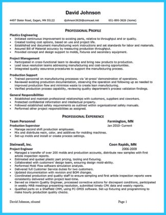 financial auditor resume and government auditor resume