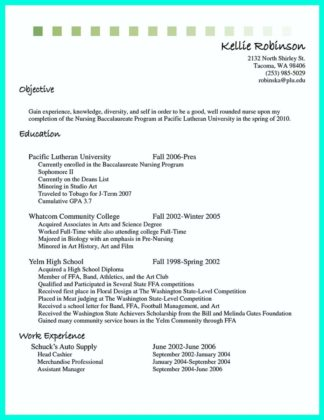 head cashier resume and cashier experience on resume