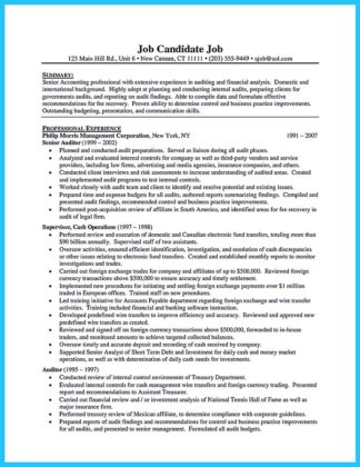 it auditor resume and big 4 audit resume