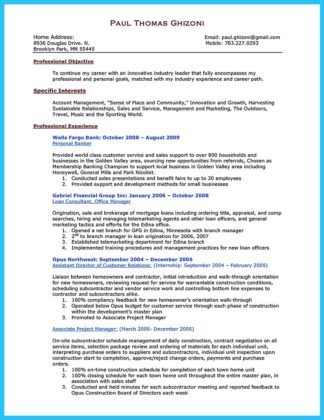 private banking resume examples and banking resume summary samples