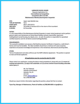 renovation carpenter resume