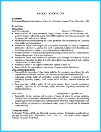 resume of auditor and audit executive resume
