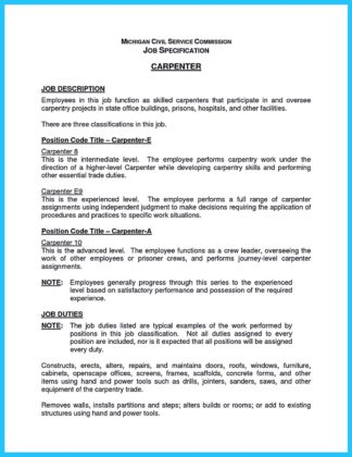scenic carpenter resume example