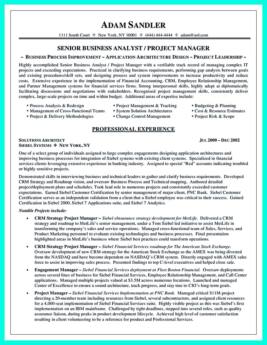 successful computer programmer resume