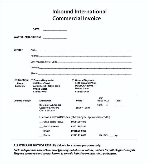 International Commercial Invoice templates PDF