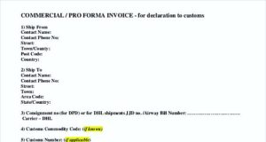 Standard Commercial Proforma Invoice Format